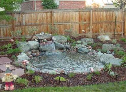 Tips for building a garden pond dot com women for How to build a small pond