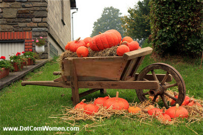 outdoor fall thanksgiving decorating with pumpkins dot