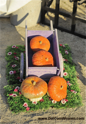 Outdoor Fall Yard Decorations with Pumpkins