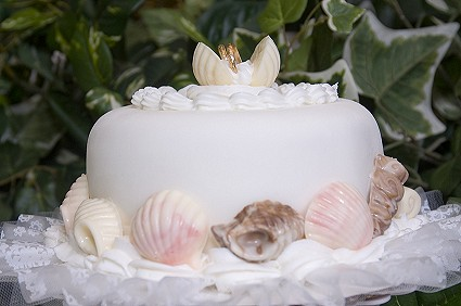 At The Top Center Wedding Rings Rest Among Clam Shells A Perfect Cake For Beach Themed