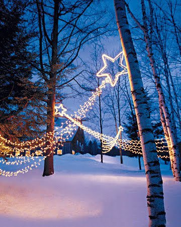 Diy christmas light decoration ideas outdoor christmas for Amazon christmas lawn decorations