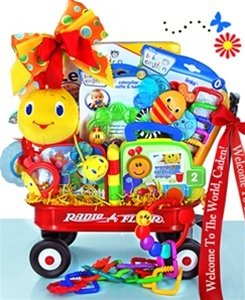 Gift Basket filled with Developmental Toys from Baby Einstein