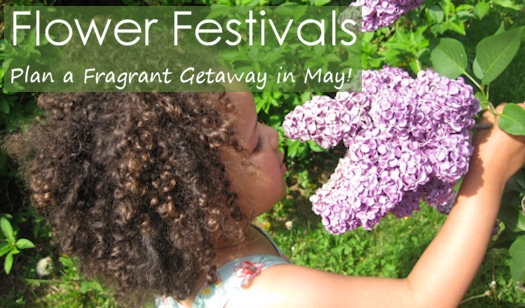 Spring Flower Festivals in the Month of May in USA