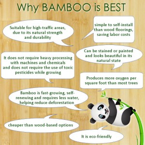 Benefits of Bamboo for Home Decorating