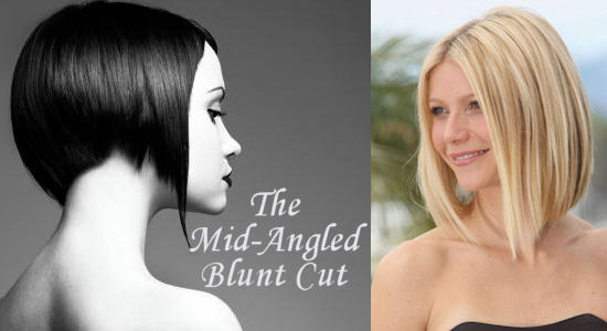 The mid-length angled blunt cut also known as the 'Long to Short Hair Cut'