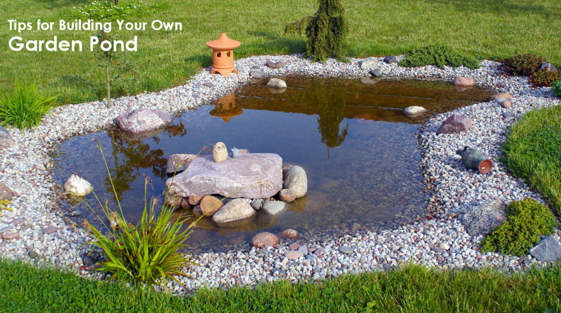 Tips for building your own pond dot com women for Making ponds for a garden
