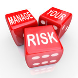 The Importance of Underwriters and Risk Management
