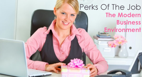 Perks Of The Job - The Modern Business Environment