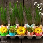 Easter Centerpiece Idea - Flowers and Grass in Colored eggshells