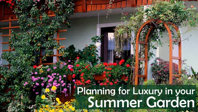 Planning for Luxury in your Summer Garden