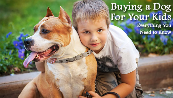 Buying a Dog For Your Kids - Everything You Need to Know