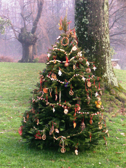 Decorate an outdoor holiday tree for animals dot com women for Decorating outdoor trees