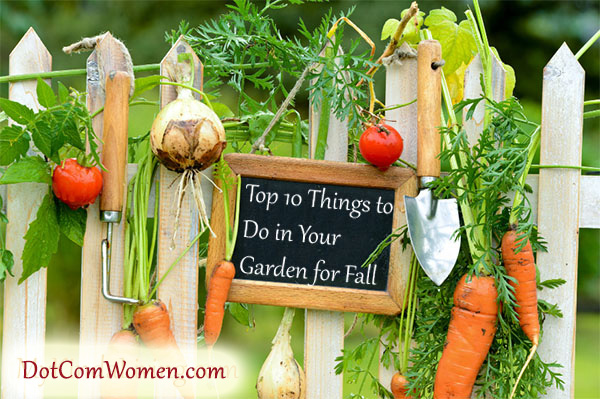 Top 10 Things to Do in Your Garden for Fall