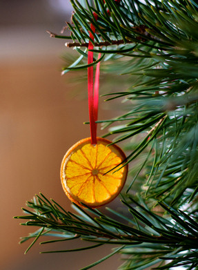 orange slice christmas ornaments