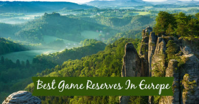 Popular Game Reserves In Europe